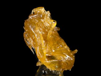 wax dab of cannabis concentrate